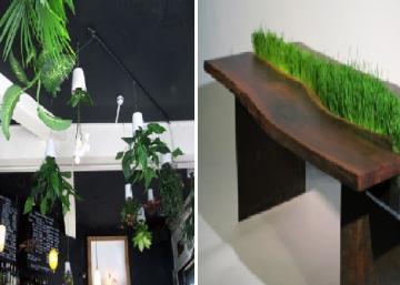 Faites entrer le printemps dans la maison! 20 aménagements de plantes d'intérieur plutôt rafraîchissants