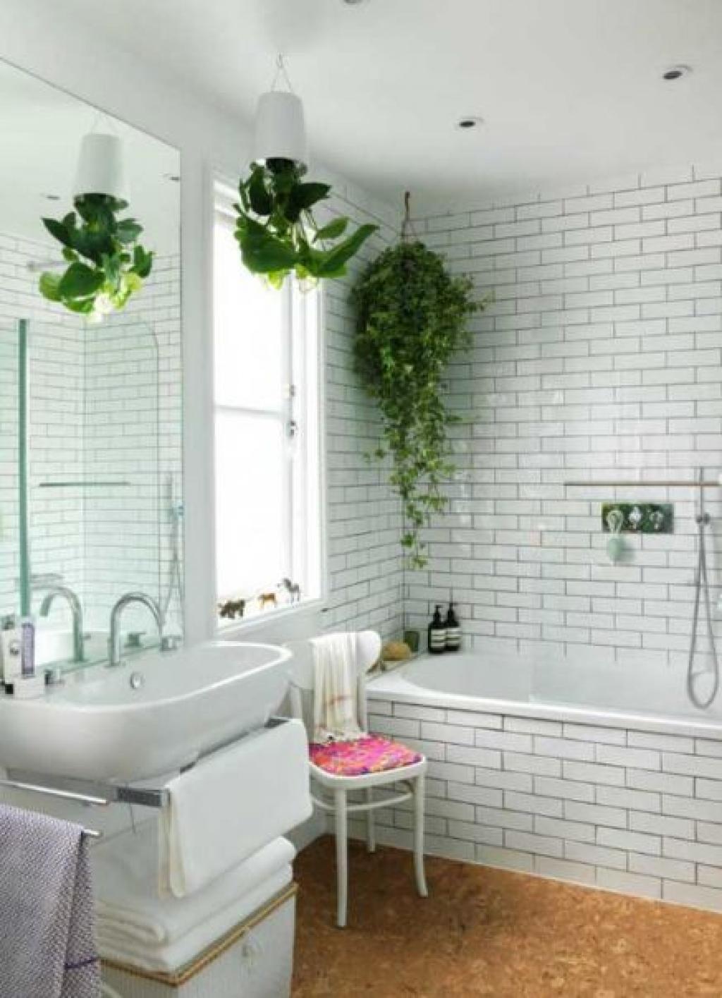 Fougeres Dans La Salle De Bain ~ fougere salle de bain maison image id e