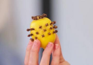 Un citron piqué de clous de girofle, ça éloigne les moustiques, mais pas seulement...