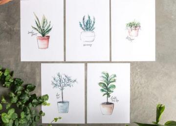 À encadrer ou à épingler, ces magnifiques illustrations vous sont offertes gratuitement...