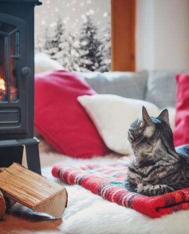 Le temps froid arrive! Portez une attention particulière aux méthodes de chauffage!