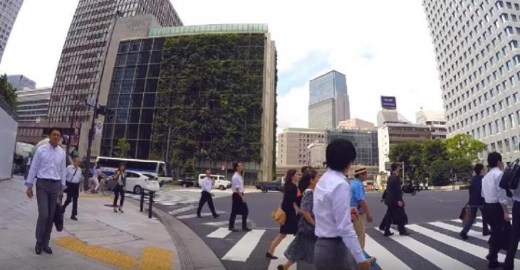 À tokyo une tour à bureaux se transforme en potager géant