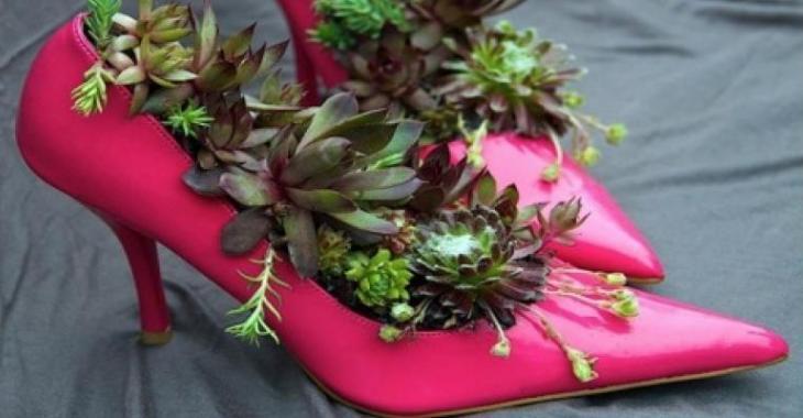 15 façons originales de dévoiler vos plantes!