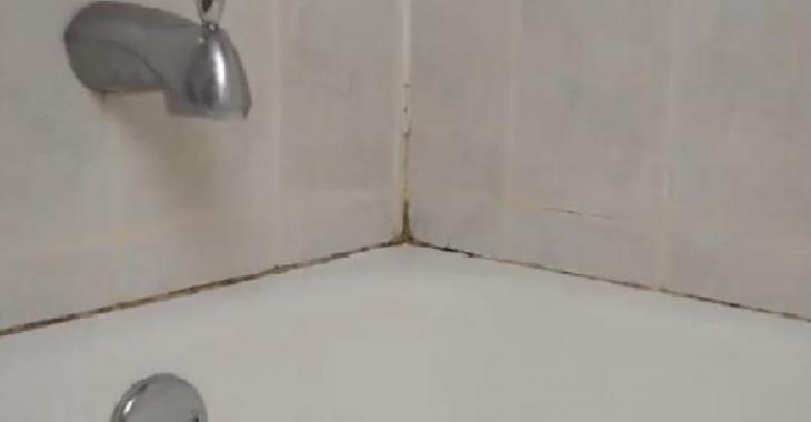 Enlever Les Moisissures comment enlever les moisissures autour du bain sans frotter