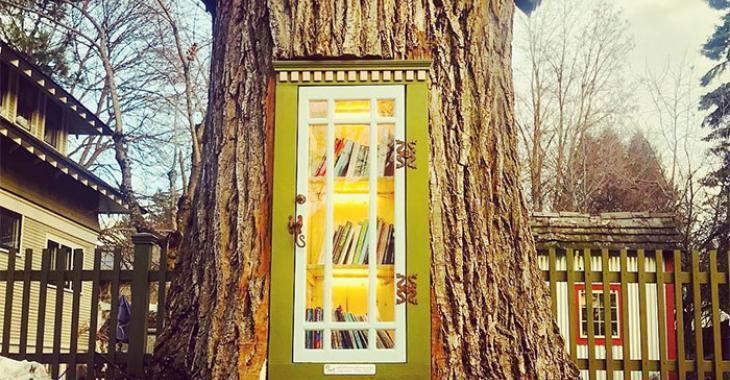 Une femme a transformé un arbre mort de 110 ans en une charmante petite bibliothèque gratuite pour son quartier
