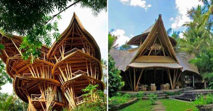 Cette femme a tout quitté afin de construire des maisons en bambou à Bali