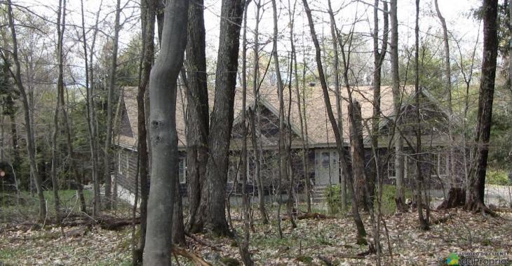 Cette maison est parfaite pour les amoureux de la nature!