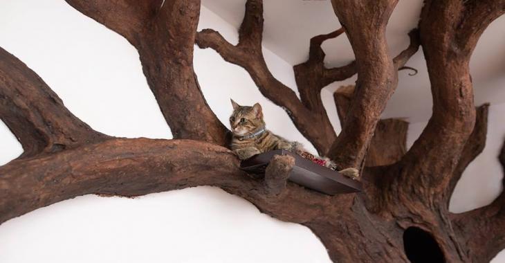 Que diriez-vous d'avoir un arbre sculpté dans votre salon pour le roi de la maison?