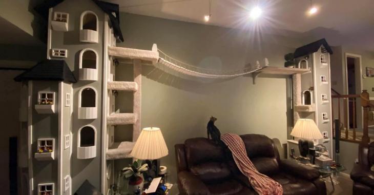 Qu'est-ce qui est mieux qu'une tour à condos? Une tour à condos construite sur mesure pour les chats de la maison!