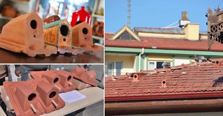 Une entreprise fabrique des tuiles qui servent aux maisons des humains tout comme à celles des oiseaux!