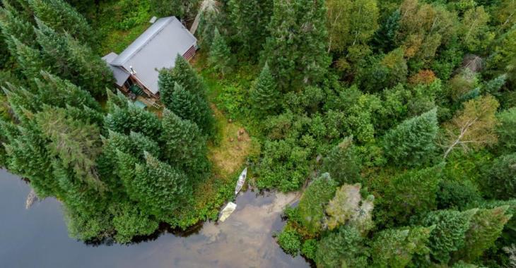 La paix absolue vous attend dans ce splendide refuge en forêt avec la rivière et les arbres pour uniques voisins