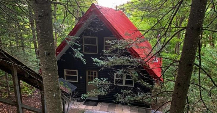 """Surnommé """"la maison dans les arbres"""", ce refuge tout en bois à 236 900$ offre un intérieur clés en main, l'accès à un lac et bien plus!"""